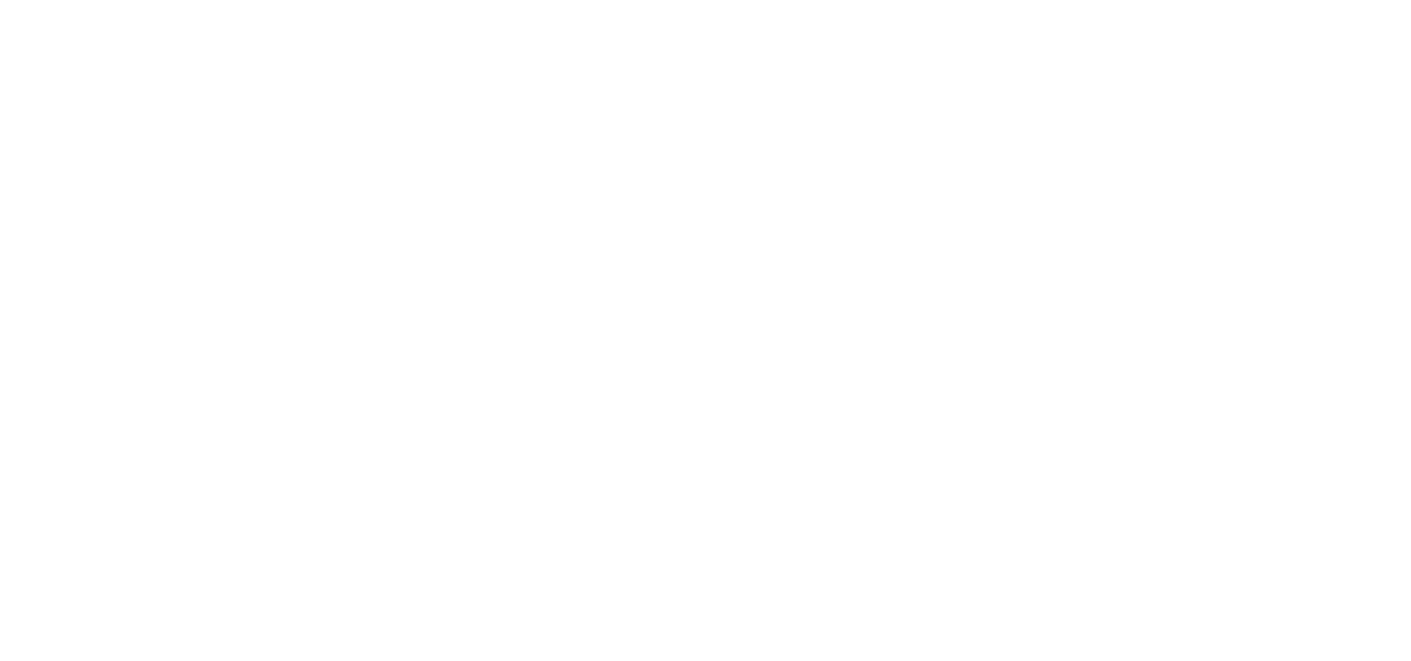 Cycle Safe Plus wit